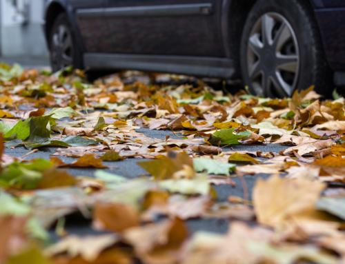 Con la llegada del otoño y las lluvias, extrema la precaución al volante.