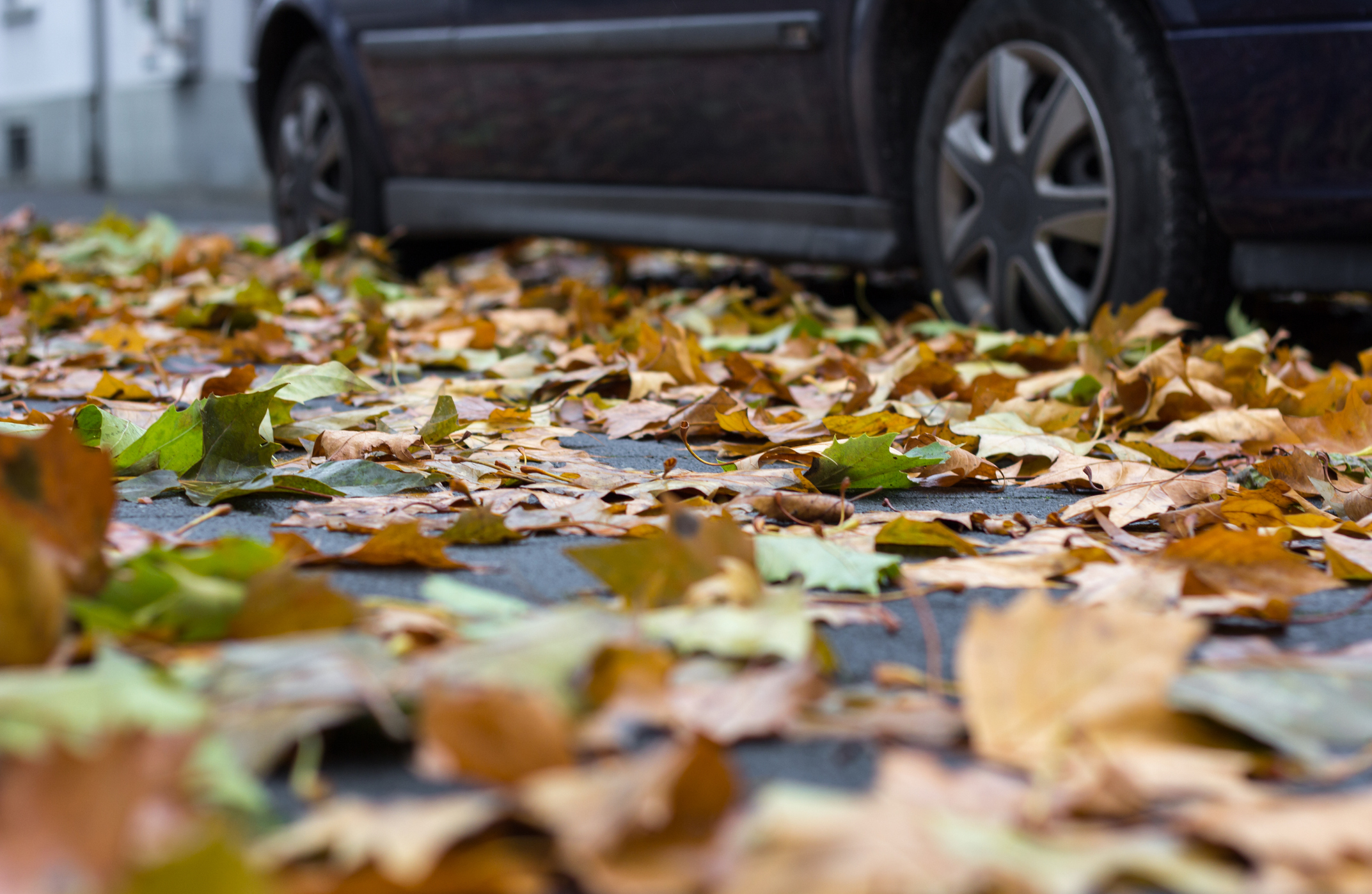 Extrema la precaución al volante ante las lluvias. Grupo CMR.